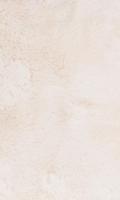 Kožešina metráž 10635 Guanaco cream